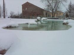 bazen-jezirko-013